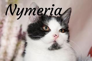 Nymeria_titulka.jpg