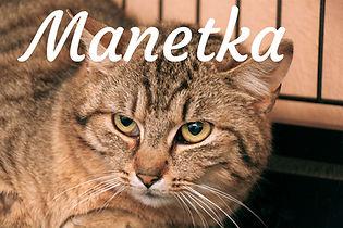Manetka.jpg