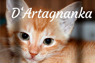 D'Artagnanka.jpg