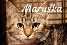 Maruška.jpg