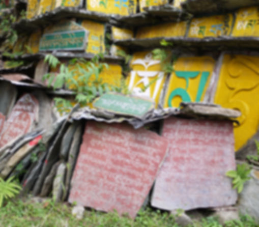In Between two terrains - Gangtok.JPG