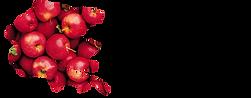 logo-e1567591930581.png