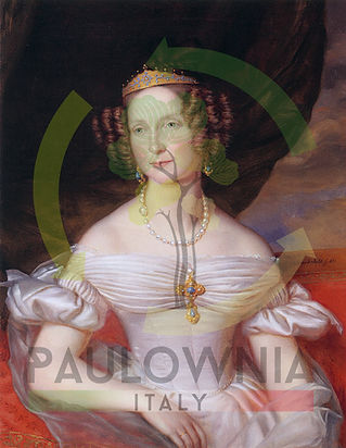 3 - Anna Pavlovna.jpg