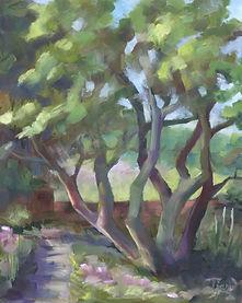 Rothstein Tree in Garden - Clermont (8x1