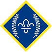 chief-scouts-platinum-award-rgb-png.png