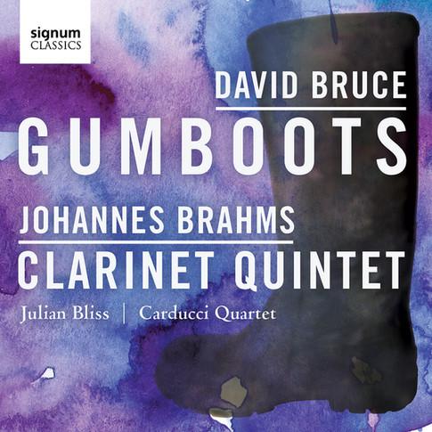 David Bruce: Gumboots