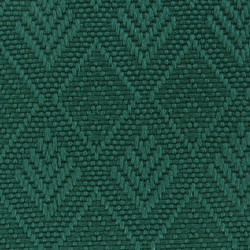 Evergreen 23