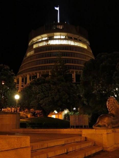 NZ Parliament - Film Screening