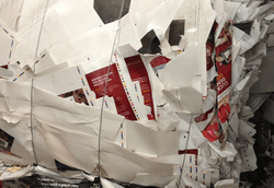 Shredded SBS (Light Print Stock) Scrap - Baled