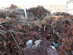 Copper Birchcliff Scrap