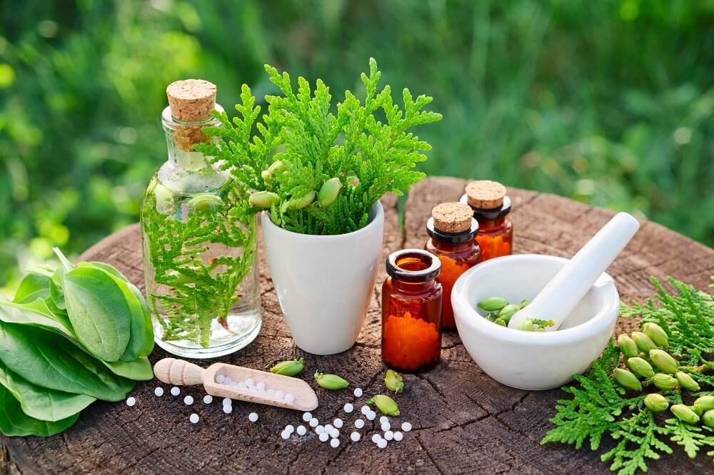 Herbal or Phytochemical Extract