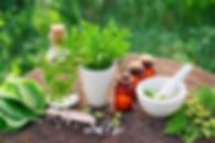 Herbal Extract, Phytochemical Extract, uae, dubai, india, pakistan, karachi, lahore, bangalore, mumbai, pharmaceutical, enzymes, nutraceuticals, food, supplements, Amino, Amino Acids, Probiotics, Herbal, Extract, Phytochemical, medical, vitamins, vitamin d3, vitamin b, biotechnology, takeda, mylan, novartis, bio, Amylase, Papain, Pepsin, Serratiopeptidase, textile, pharmaceutical, paper, effluent, detergent, yeast, nutrition, health