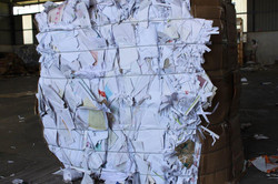 White Sorted Office Paper Scrap