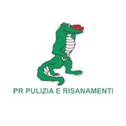 PRFrancisco.jpg