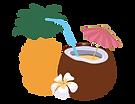Rain Wellness Spa Tropical Refresher Fac