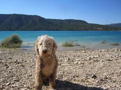 Lac St Cassien