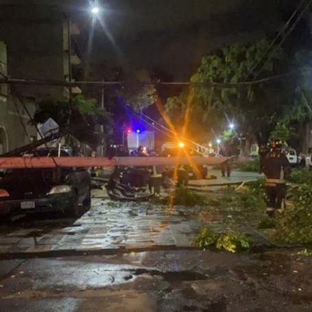 Lluvia provoca caída de 8 árboles en la CDMX