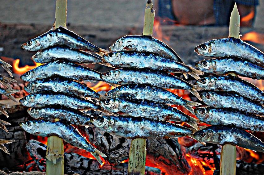 andalusia-costa-del-sol-beach-sardines.j