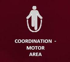 cordination.JPG
