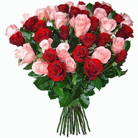 Buquê 38 Rosas (Verm/Rosa)