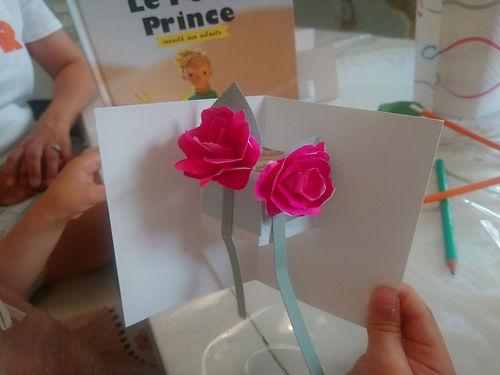 Rose Petit Prince.JPG