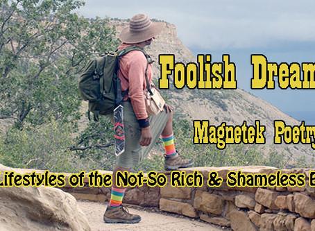 Foolish Dreamer