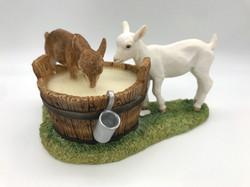 Kids in milk