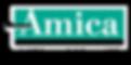 Amica black AHL_4C.png