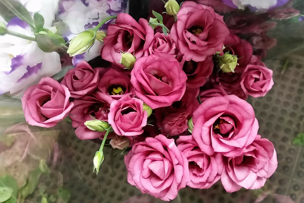 A bunch of rich pink and ruffled flower called lisianthus