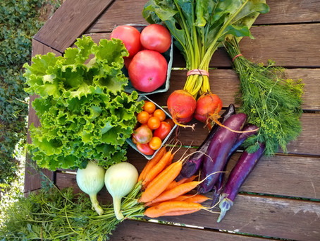 SNAP/ HIP Vegetable CSAs  available, sign-up today!
