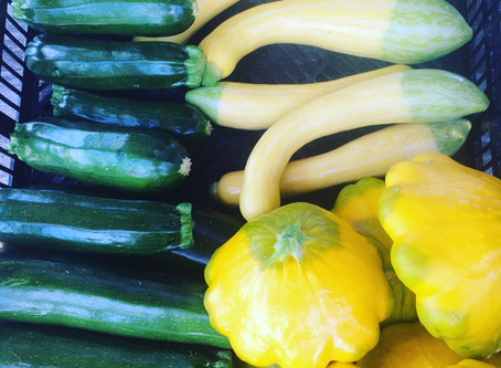 What the heck is a patty pan?