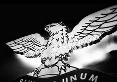 Benfica: Defeito ou Feitio??
