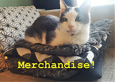 Kopi Soesoe merchandise.png