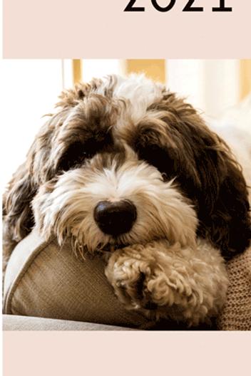 Agenda 2021 - Honden