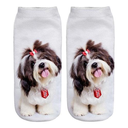 Shih Tzu print sokken