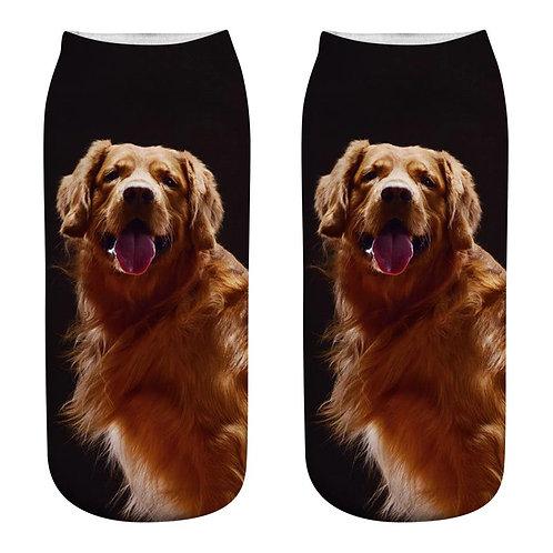 Golden Retriever print sokken