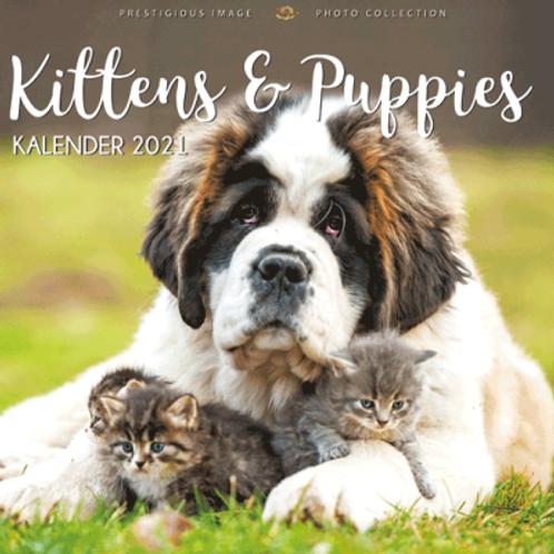 Kalender 2021 - Kittens & puppies