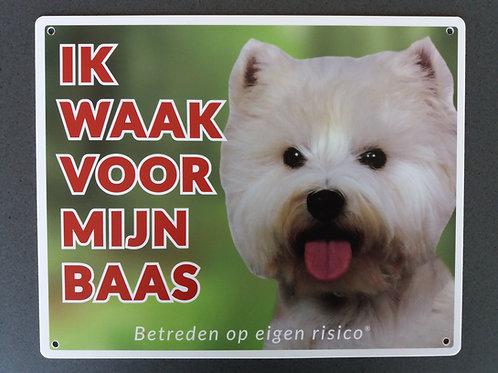 Waakbord hond - West highland white terrier