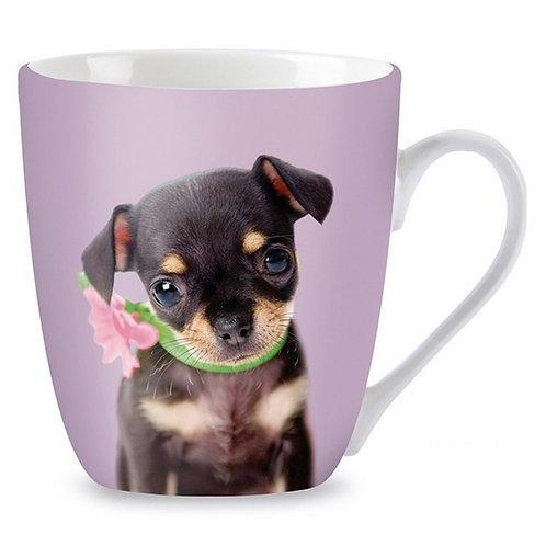 Mok Studio Pets Chihuahua