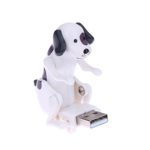 Leuke springende hond - USB