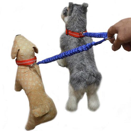 Verstelbare dubbele hondenriem