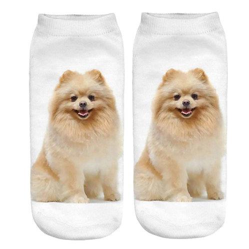 Pomeranian print sokken