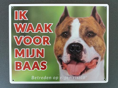 Waakbord hond - American Staffordshire Terrier