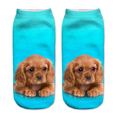 Cavalier king charles-spaniël puppy print sokken