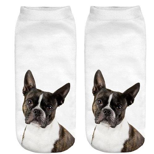 Franse Bulldog print sokken