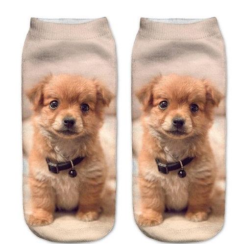 Tolling retriever puppy print sokken