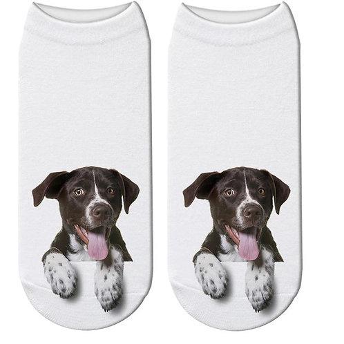 Duitse brak print sokken