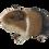 Thumbnail: Cavia beeldje