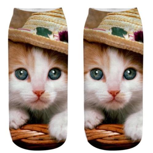 Sokken met kitten print - kitten met mexicaanse hoed
