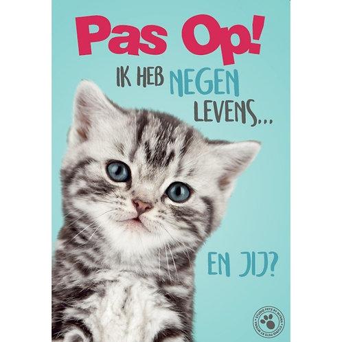 Kitten waakbord - Pas op ik heb 9 levens…